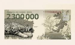Greenpeace lança 'nota' de R$ 2,3 milhões em protesto a incêndio no Pantanal