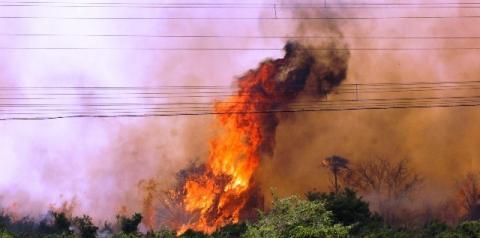 Com reforço, força-tarefa retoma combate às queimadas no Pantanal da Nhecolândia
