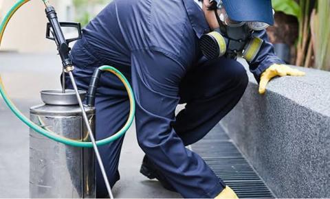 Prefeitura Informa: Trabalhos de dedetização no prédio do Paço Municipal