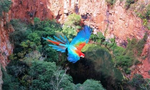 Carnaval: seis destinos para descansar e contemplar as belezas de Mato Grosso do Sul