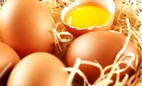 Ovos caipiras atendem à demanda de mercado