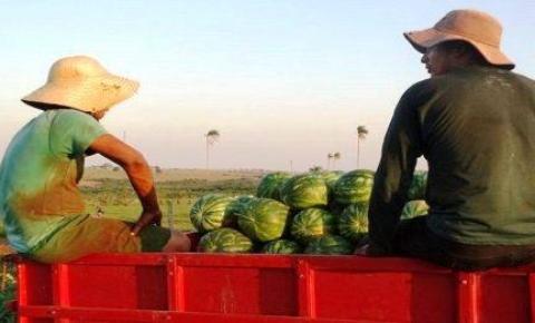 Agricultura familiar: caminhões são para conservação de estradas em mais 10 municípios