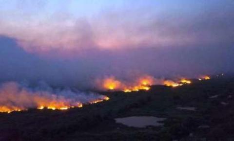 Fogo já consumiu mais de 10% do Pantanal em 2020
