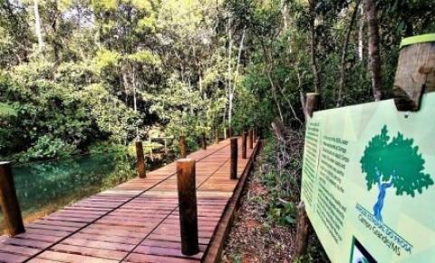 Nascentes das águas que contam história de Campo Grande são preservadas pelo Estado