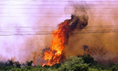 Queimadas atingem 122 mil hectares e força-tarefa intensifica combate