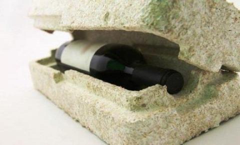 Agrônoma formada pela UEMS projeta embalagem ecológica pelo cultivo de cogumelos