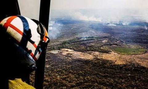Senado instala comissão para acompanhar combate a incêndios no Pantanal