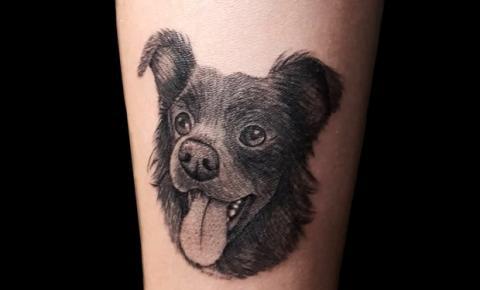 Pet lovers: tatuagens de animais de estimação são um sucesso nos estúdios