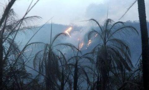 Bombeiros reforçam combate a incêndios no Pantanal entre MS e MT