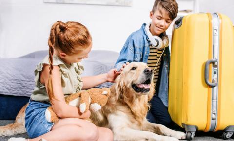 Quais os cuidados com os pets antes de sair de férias?