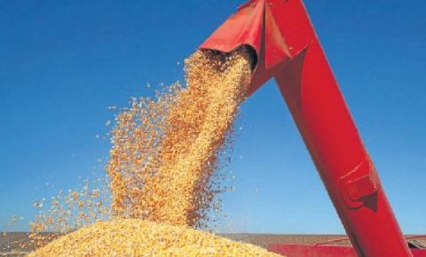 Saca do milho dobra de preço em Mato Grosso do Sul