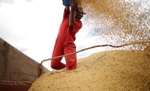 Governo define aporte de R$ 13 bilhões do Tesouro Nacional ao Plano Safra