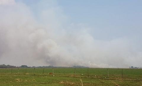 AGORA: Avião militar cai e piloto ejeta antes de aeronave explodir em Campo Grande