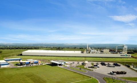 Greenplac investe em logística, produtos e sustentabilidade para atender os segmentos imobiliário e de decoração